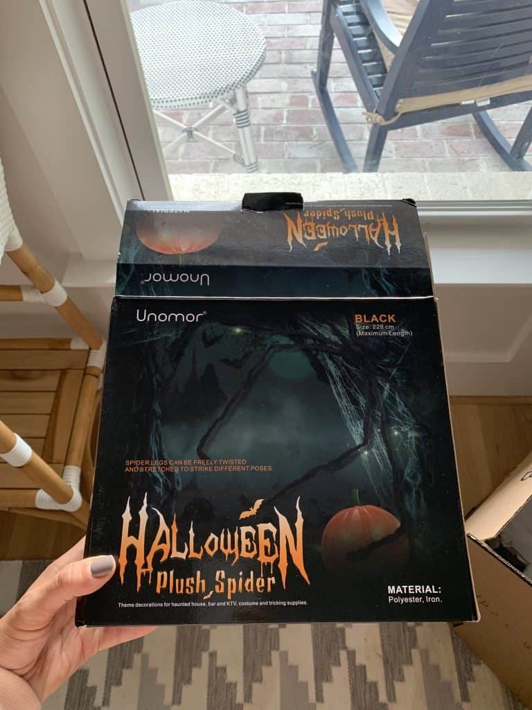 box with pretend giant Halloween spider inside