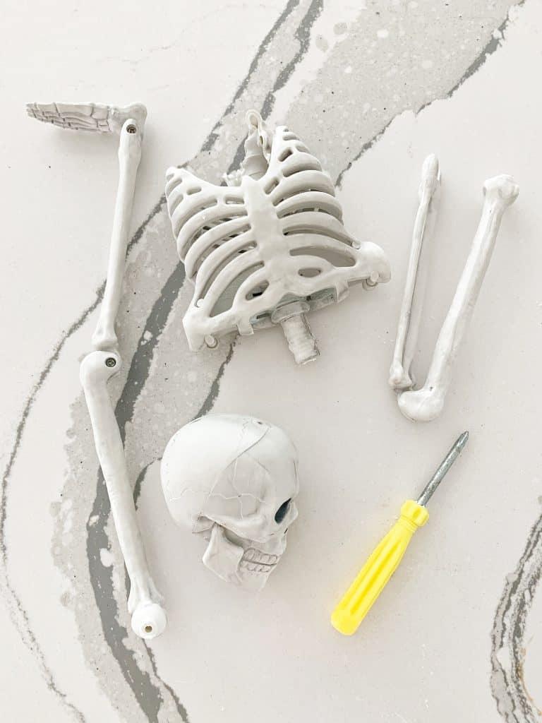 a pretend skeleton taken apart