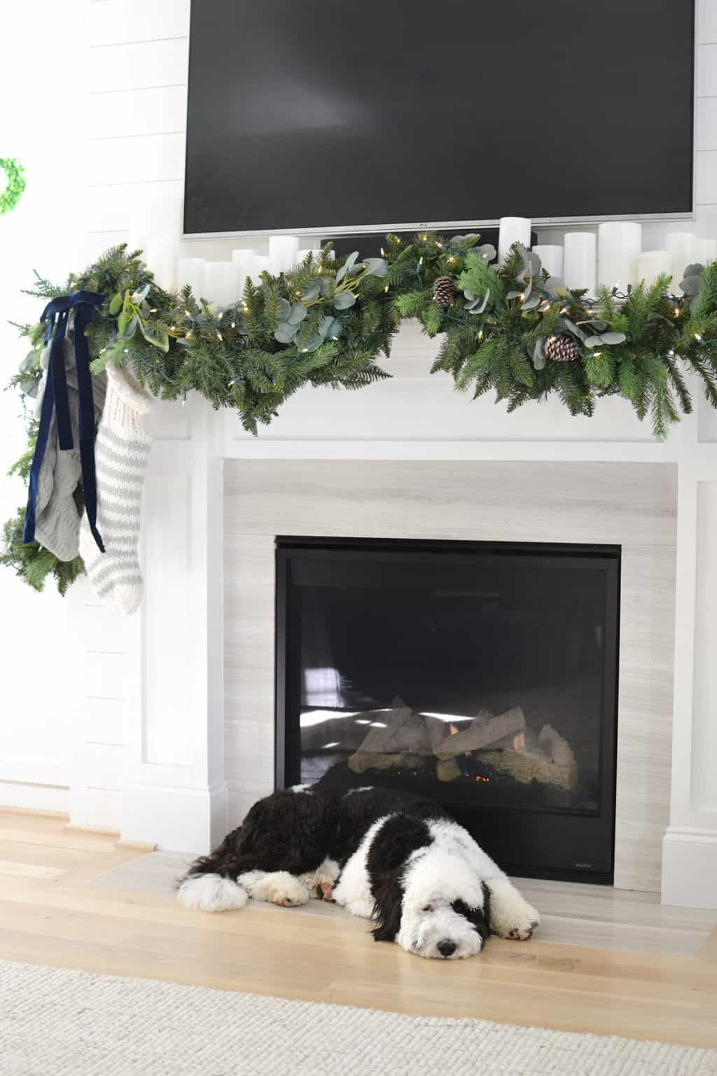 dog in front of fireplace with Christmas Garland I made