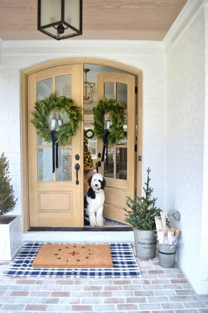 sheepaedoodle looking out front door