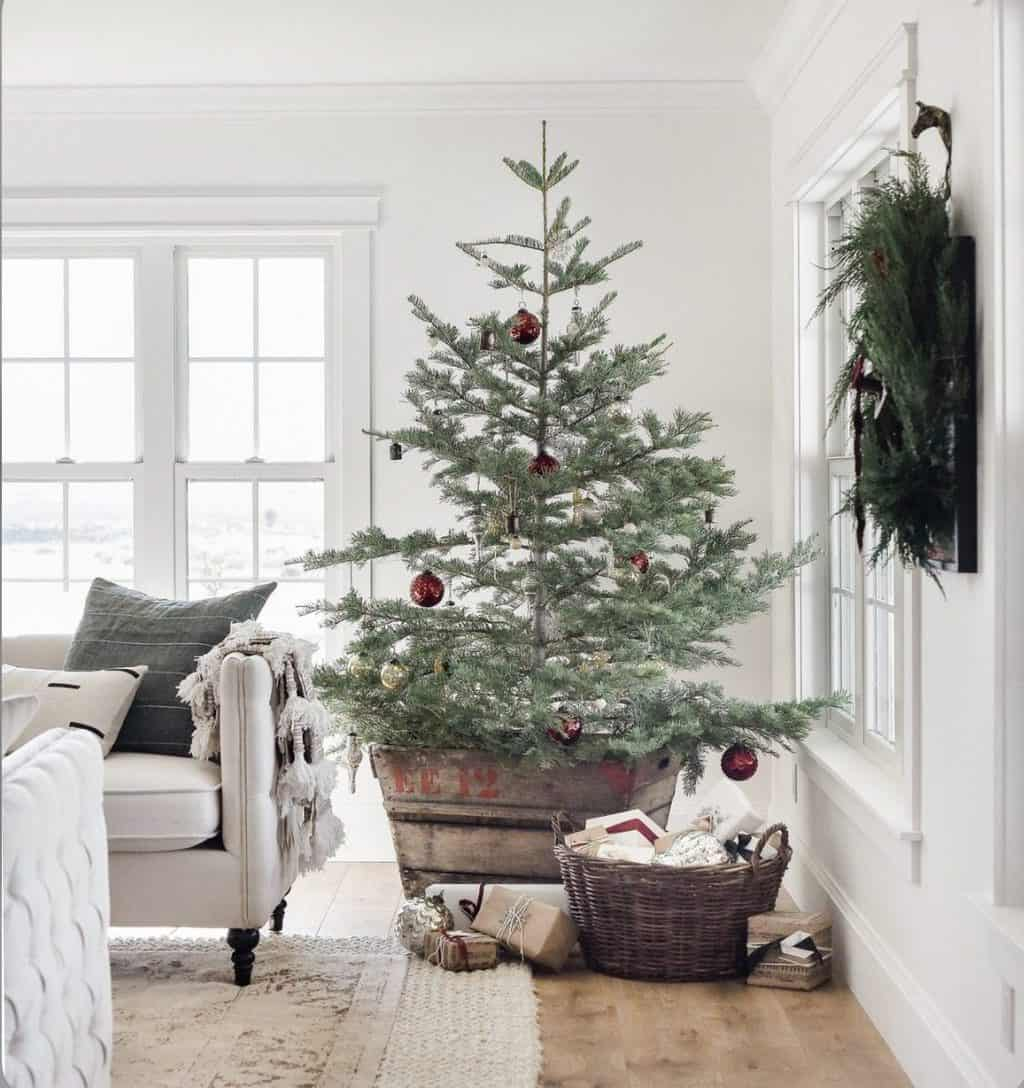 christmas tree in a rustic bucket