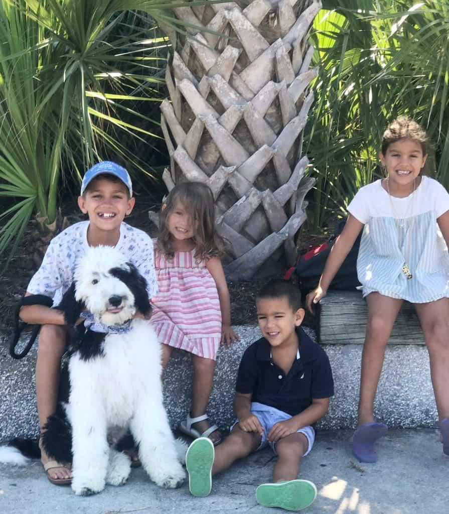 4 kids and sheepadoodle