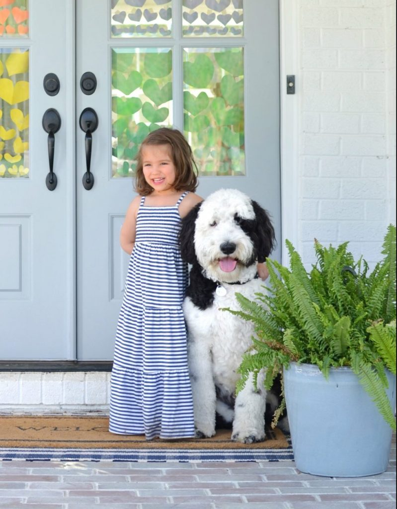 little girl in a dress with her arm around a sheepadoodle dog