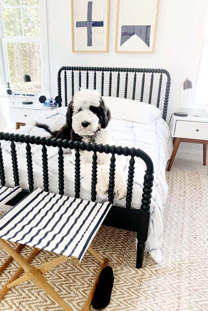 large sheepadoodle in Childs bed
