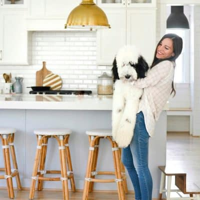 Our Pet Sheepadoodle: The Good, Bad & The Smelly