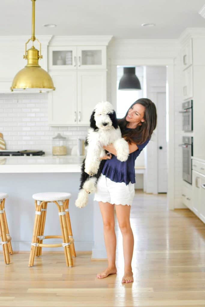 Chrissy Marie blog holding sheepadoodle dog