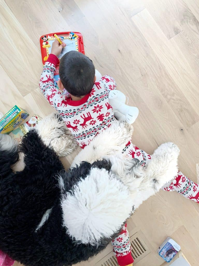 a sheepadoodle laying on a child