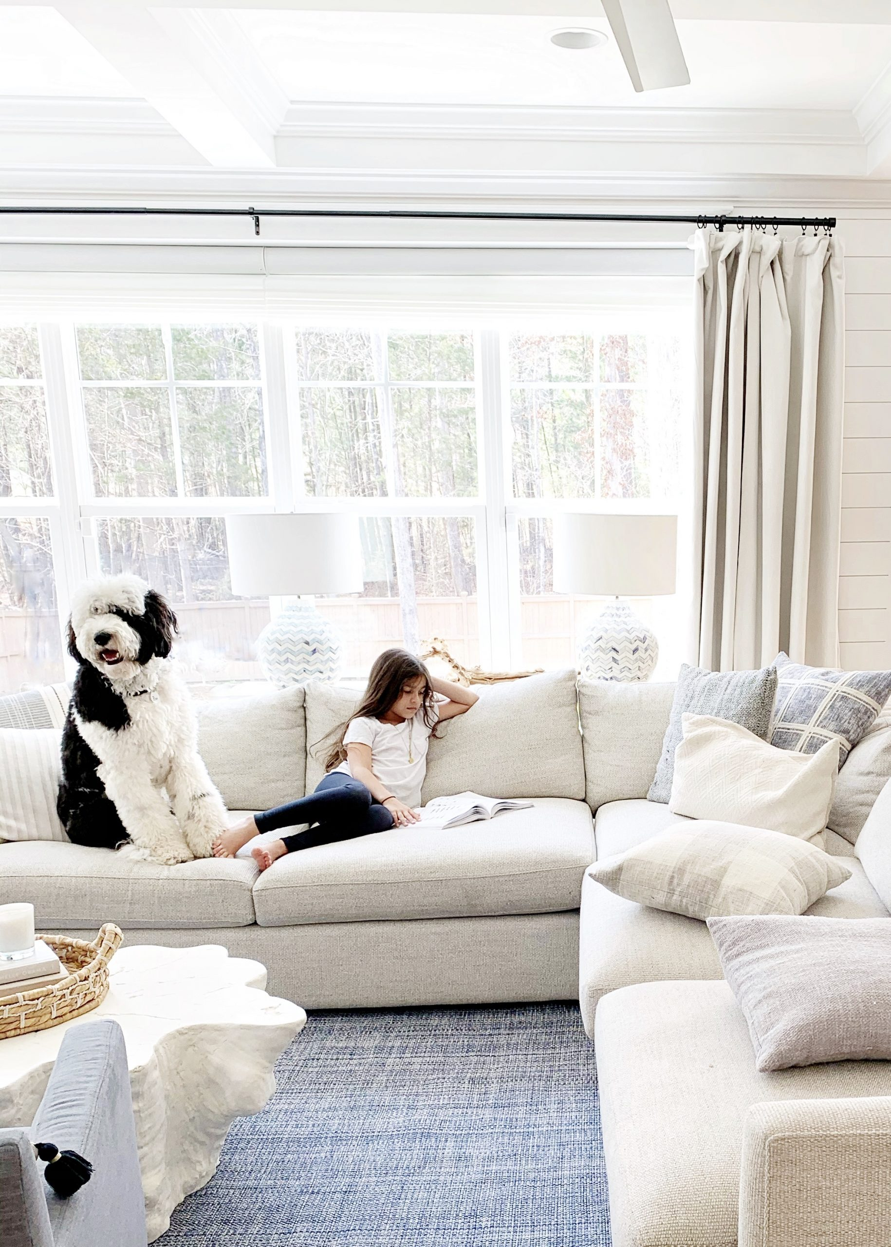 Our Giant Sheepadoodle The Good Bad The Smelly Chrissy Marie Blog