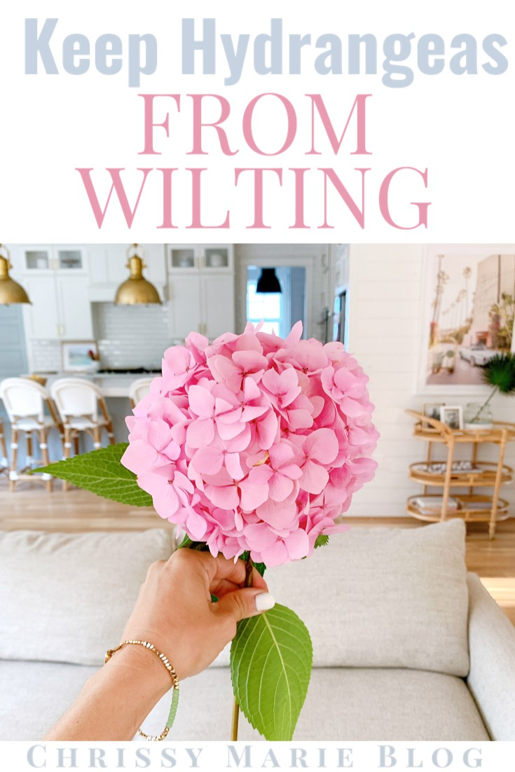 pinterest image that says how to keep hydrangeas from wilting 1