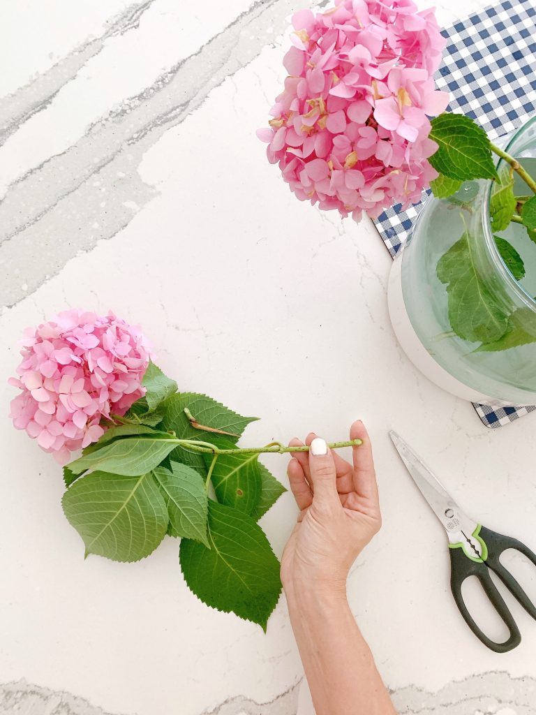how to keep hydrangeas from wilting by cutting the stems